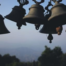 collection of bells ringing
