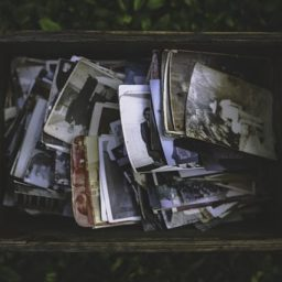 Box of old photographs